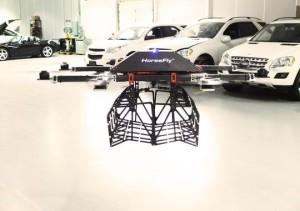 workhorse, horsefly, drone