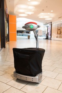 budgee carrying robot