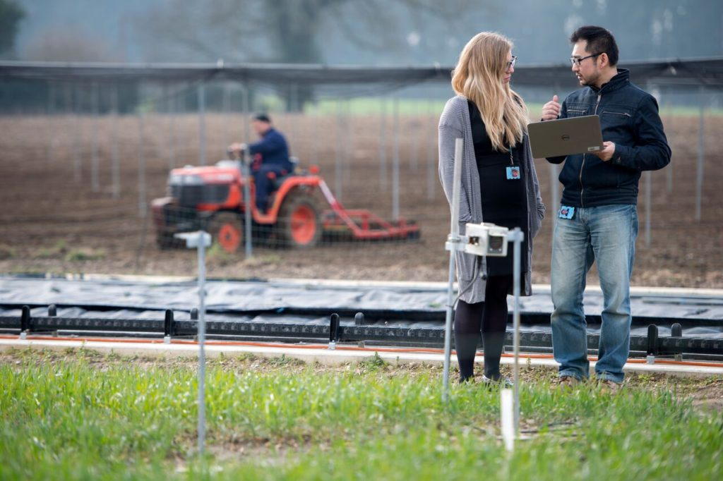 Rasperry Pi computers are being used to manage crops on farms