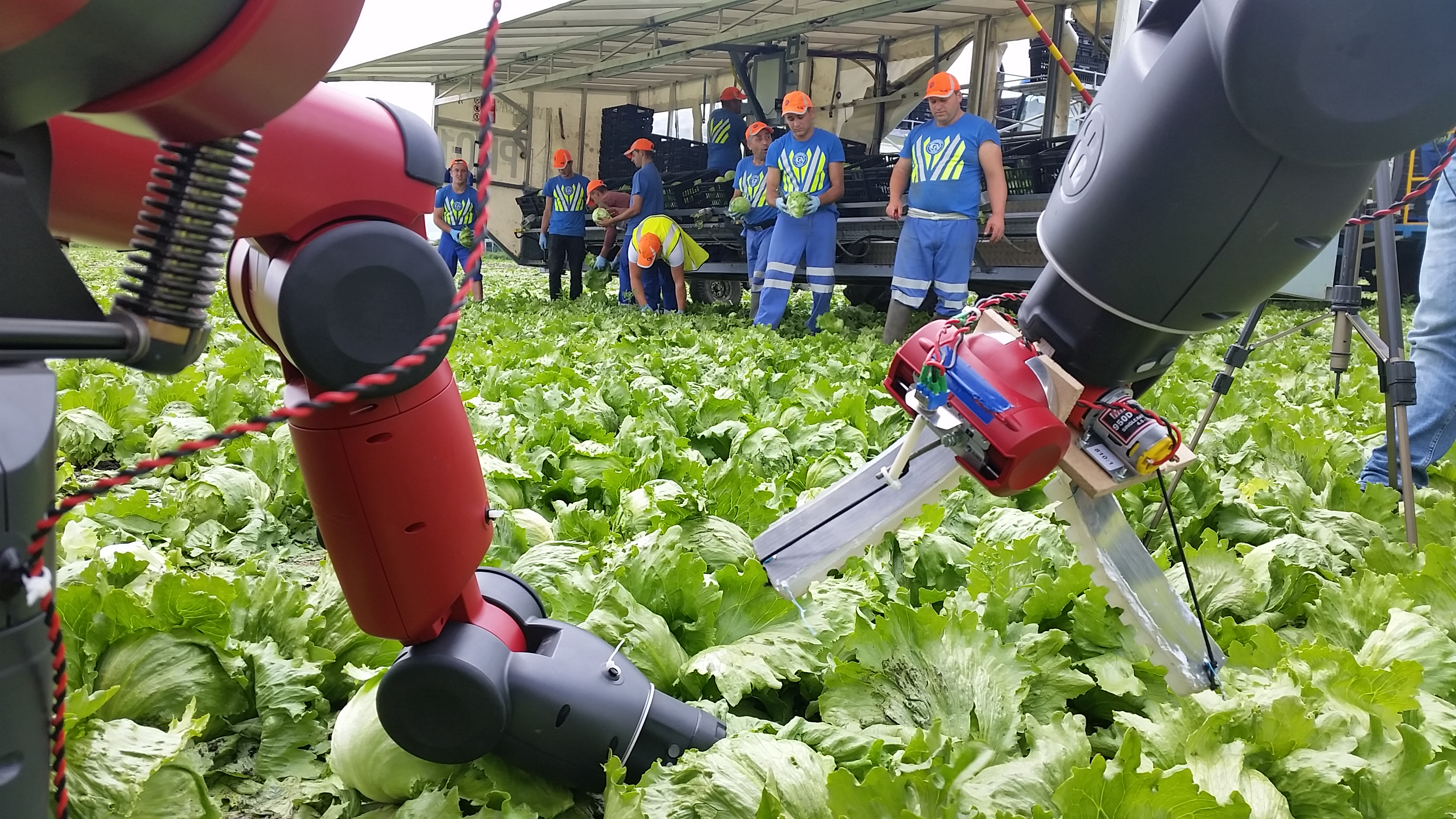 Robots emerging as agricultural co-workers