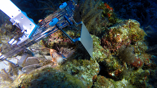 Robots planning to defend world's oceans against alien invasion