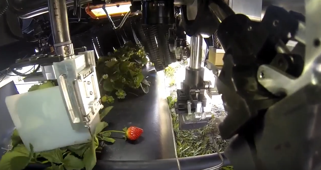 harvest croo strawberry picking robot interior view