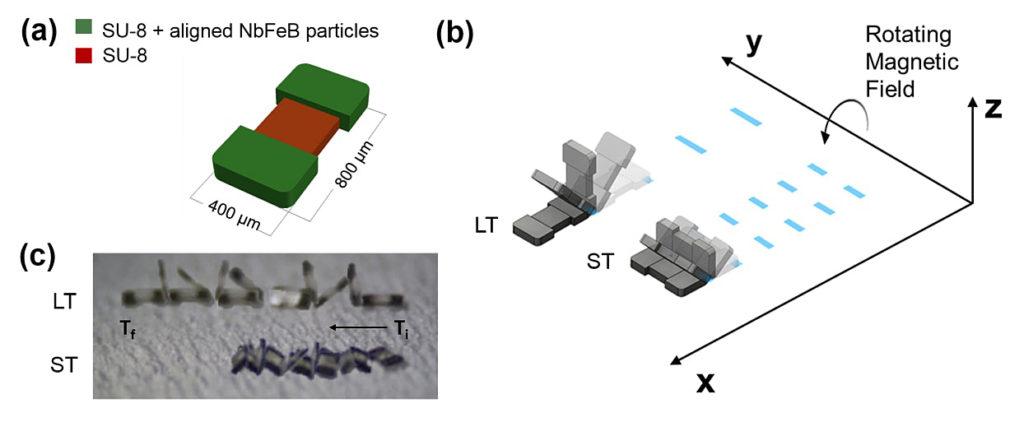 purdue tiny robot cappelleri-microtumschematic