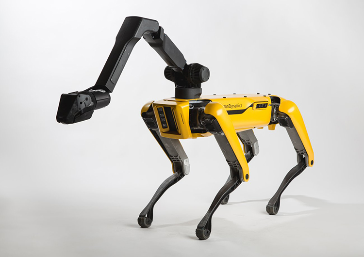 boston dynamics spotmini small