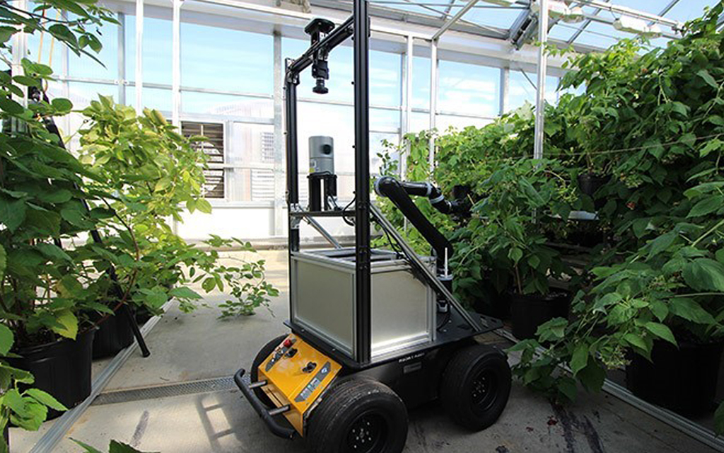 New farming robot offers different method of pollination