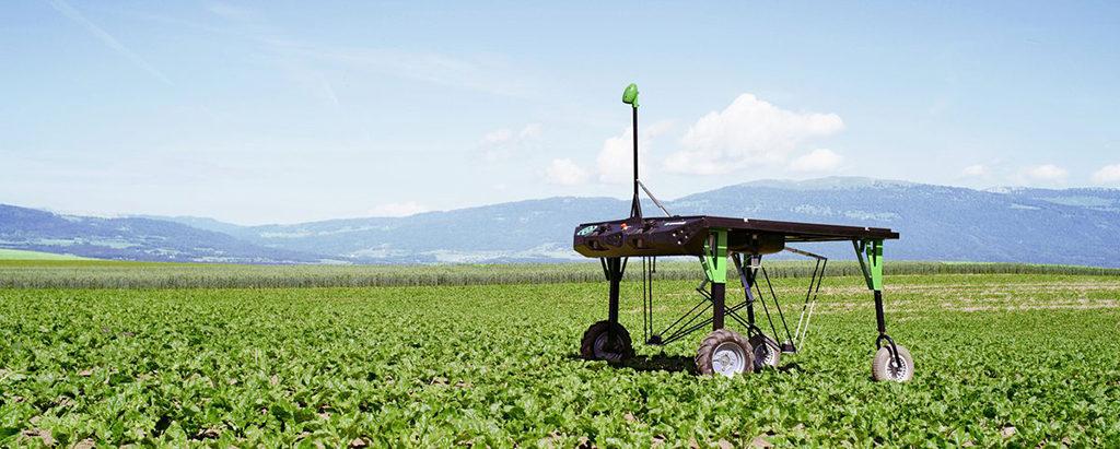 ecorobotix weeding robot