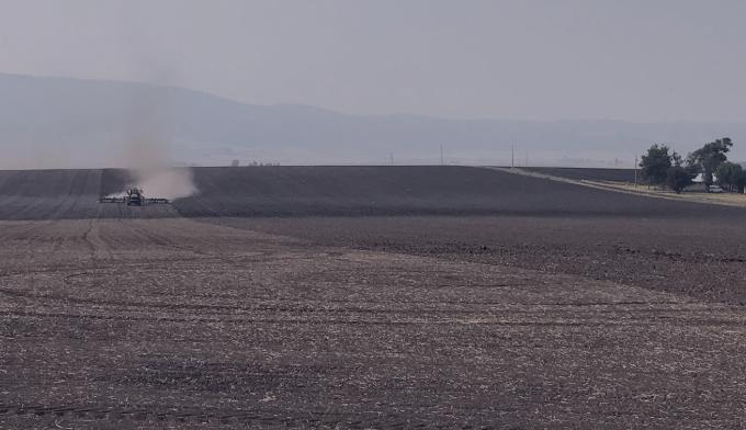 terraclear field