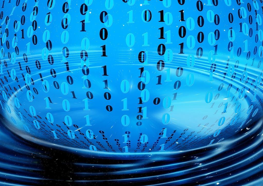 software-binary